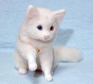 オッドアイ白猫1301001 011