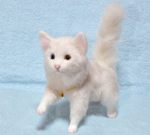 オッドアイ白猫1301001 028