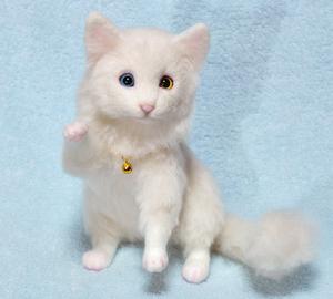 オッドアイ白猫-1301001 021