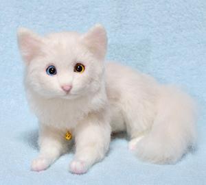 オッドアイ白猫-1301001 018