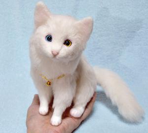 オッドアイ白猫-1301001 063