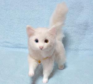 オッドアイ白猫1301001 032