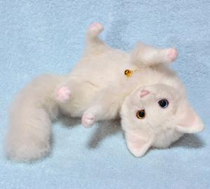 オッドアイ白猫-1301001 036