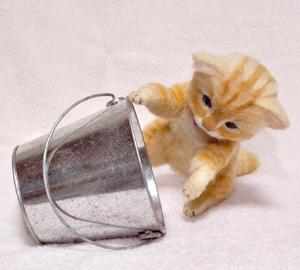 茶トラ猫131010 028