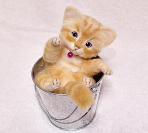 茶トラ猫131010 039