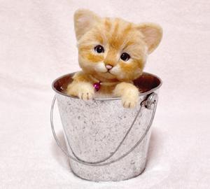 茶トラ猫131010 034