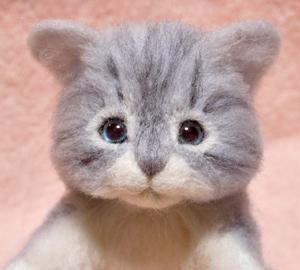 サバトラ猫131016 015
