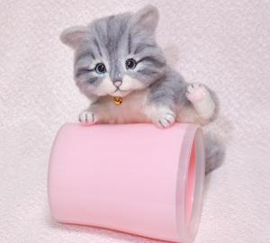 サバトラ猫131017 033