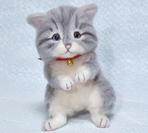 サバトラ猫131017 018