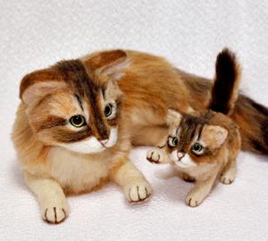 ソマリ親子猫1311020007