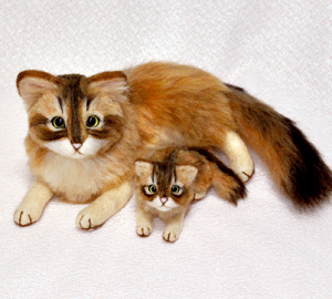 ソマリ親子猫1311020011