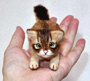 ソマリ親子猫1311020027