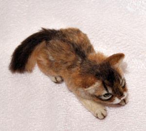 ソマリ親子猫1311020034