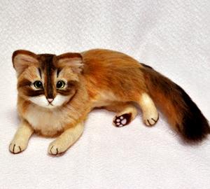 ソマリ親子猫1311020037