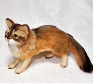 ソマリ親子猫1311020040