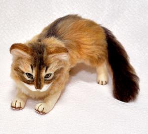 ソマリ親子猫1311020050