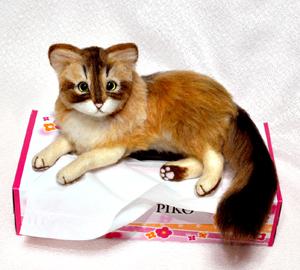 ソマリ親子猫1311020063