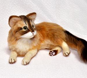 ソマリ親猫131102 001