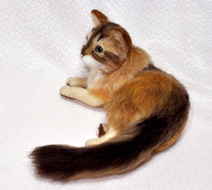 ソマリ親猫131102 006