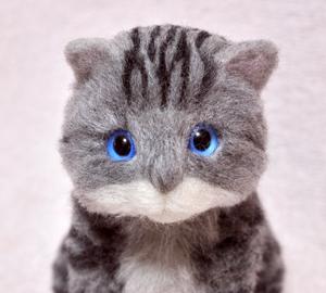 アメショ猫制作中131124 020
