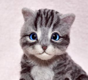 アメショ猫制作中131124 023