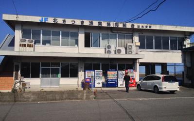 izumi_minato.jpg