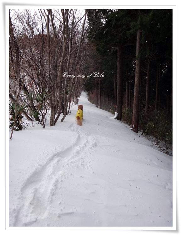 雪山へ201401