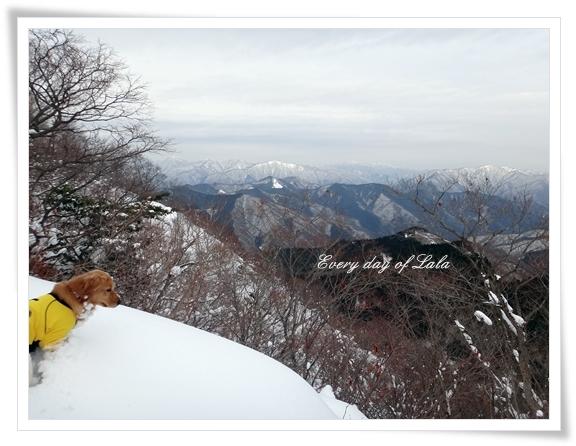 山頂1201401