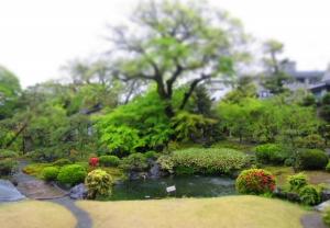 庭園IMG