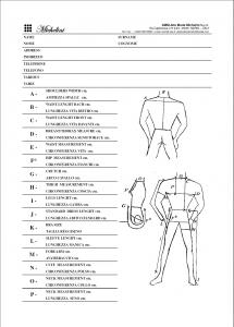 Michelini measurement