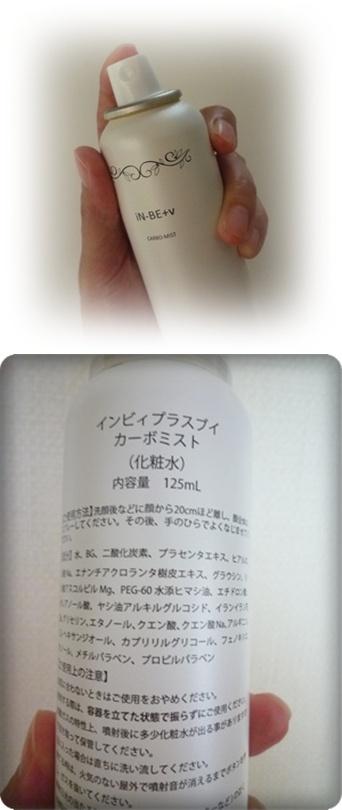 P1060589-vert.jpg
