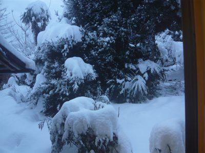 雪260206
