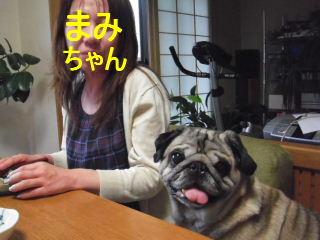 2013_0609taro0010b.jpg