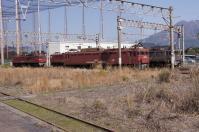 DSC04831.jpg
