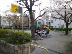 花見 (9)