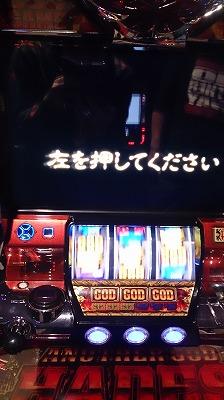 DSC_3506.jpg