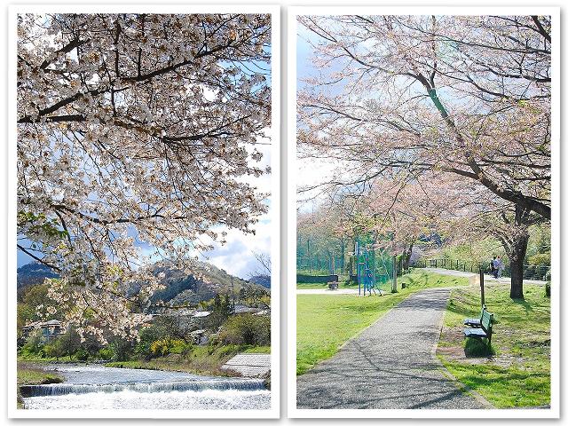お散歩☆穴場の公園