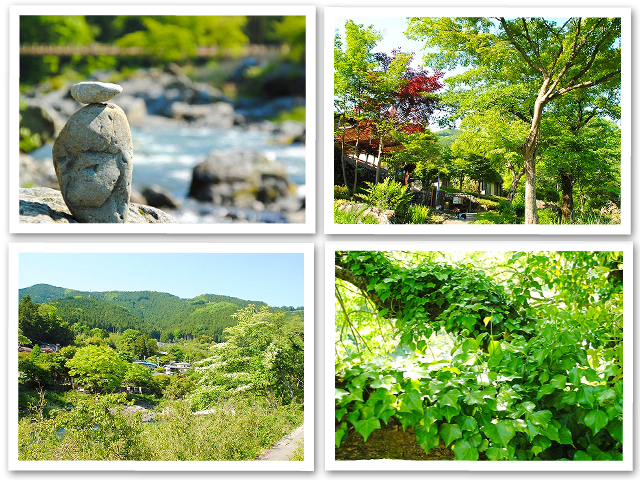 新緑の御岳渓谷