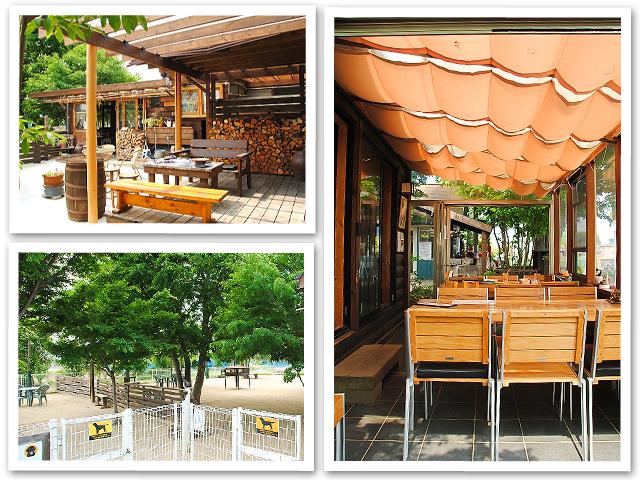 Cafe N36°