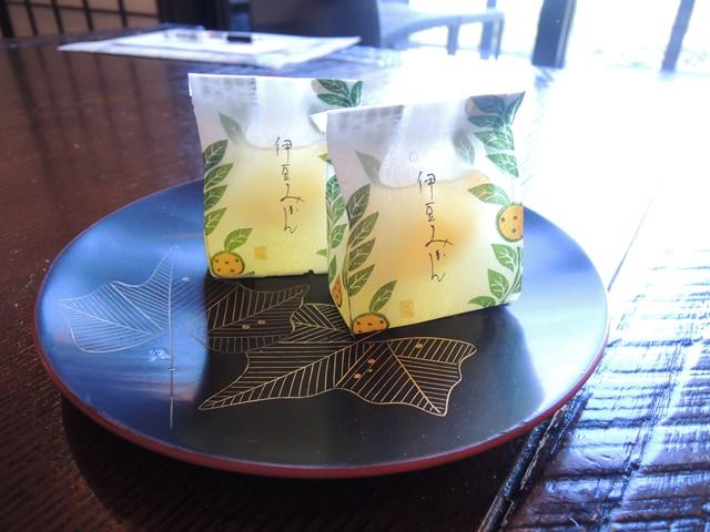 伊東遊季亭 川奈別邸29
