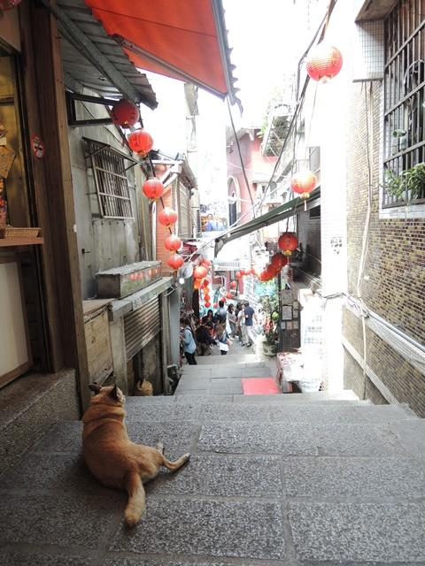 台北観光12