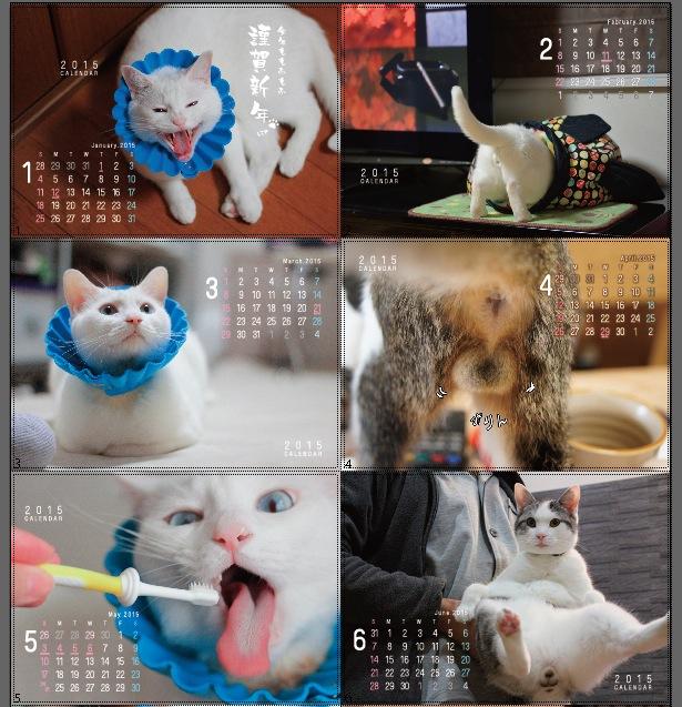 2015カレンダーイメージ図
