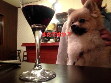 また飲んでるの?
