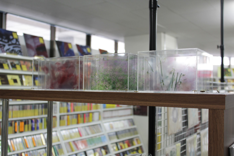 透明な箱 VOL.1店内