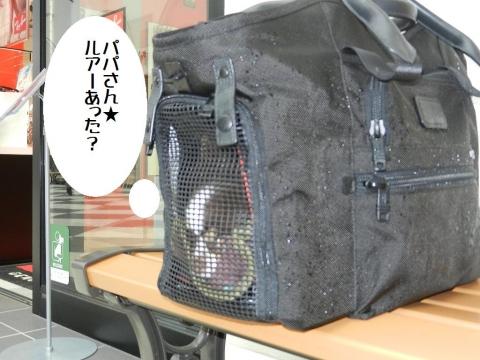 DSCN9997 千葉