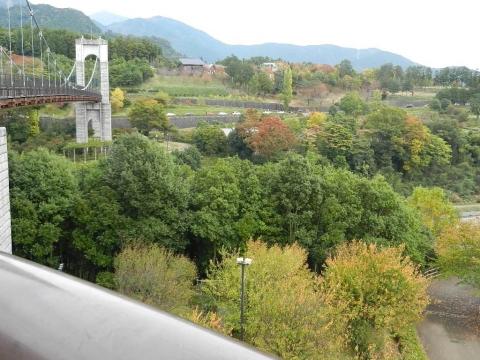DSCN0016 戸川公園
