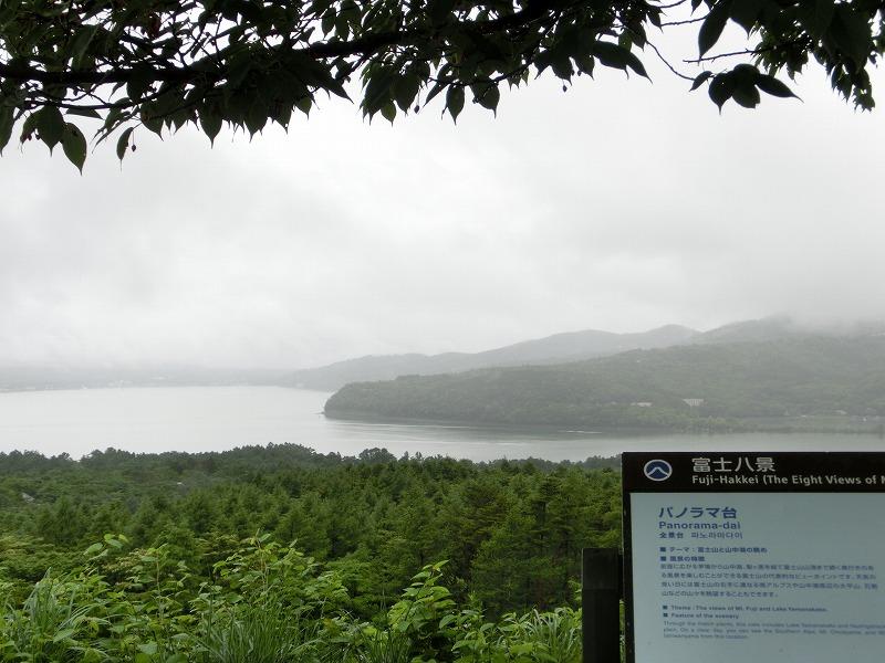 山中湖はそこそこ見える