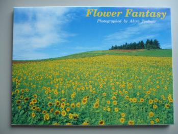 旅先で買ったポストカード(富良野)1