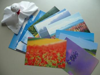 旅先で買ったポストカード(富良野)3