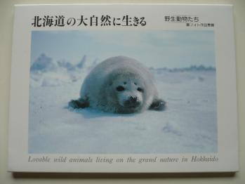 旅先で買ったポストカード(登別)1